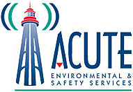 Acute Environmental and Safety Services